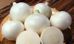 Лук салатный белый