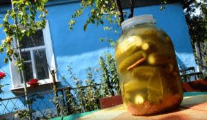 Огурцы на зиму в банке соленые холодным способом