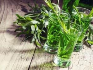 Эстрагон - замечательная добавка для консервации огурцов