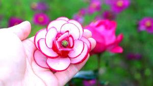 Как красиво нарезать овощи: цветок из редиса